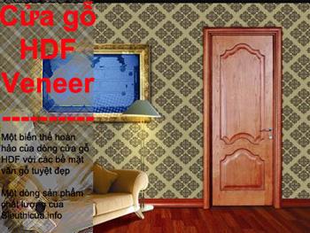 Các dòng cửa thích hợp làm cửa phòng ngủ